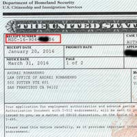check uscis case status online
